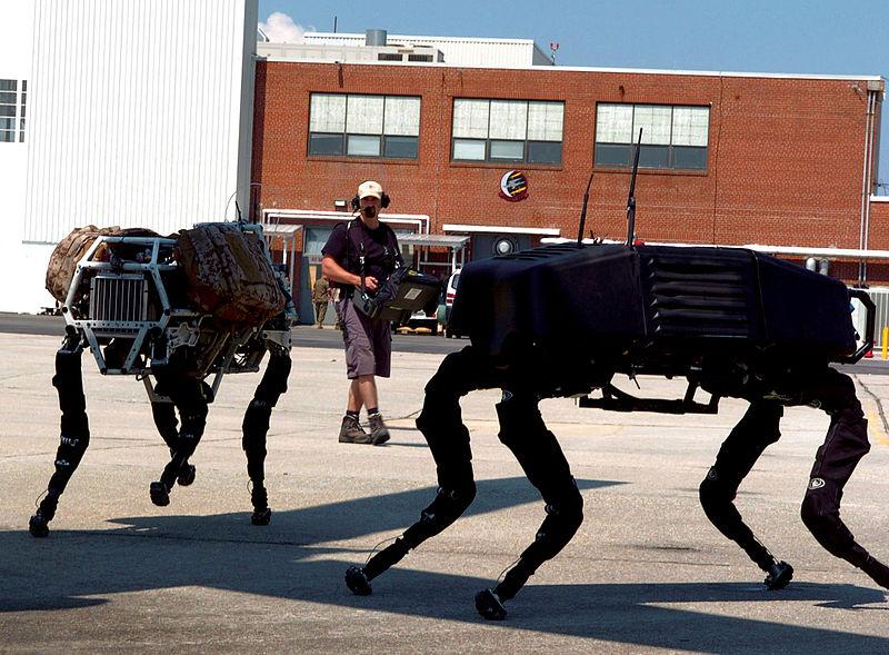 BigDog Robot